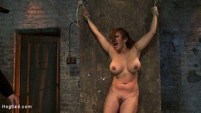 Photo number 7 from Hot Flexible Asian with big tits & nipples   Has her leg pulled up & suspended! Cums over & over. shot for Hogtied on Kink.com. Featuring Baylee Lee in hardcore BDSM & Fetish porn.