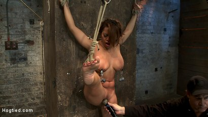 Photo number 13 from Hot Flexible Asian with big tits & nipples<br>Has her leg pulled up & suspended! Cums over & over. shot for Hogtied on Kink.com. Featuring Baylee Lee in hardcore BDSM & Fetish porn.