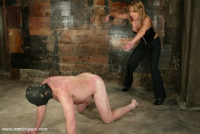Photo number 3 from Janay and Slave shot for Men In Pain on Kink.com. Featuring Janay and Slave in hardcore BDSM & Fetish porn.