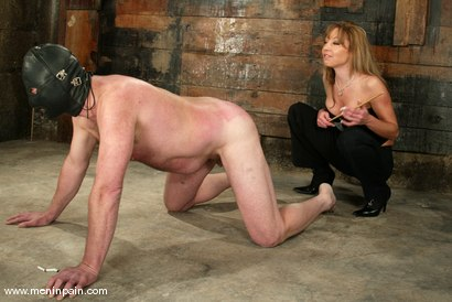Photo number 11 from Janay and Slave shot for Men In Pain on Kink.com. Featuring Janay and Slave in hardcore BDSM & Fetish porn.