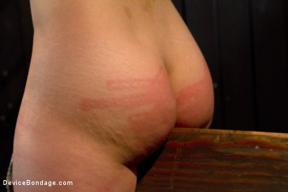 Photo number 7 from Bountiful Breasts with a Rose Red Complexion shot for Device Bondage on Kink.com. Featuring Iona Grace in hardcore BDSM & Fetish porn.