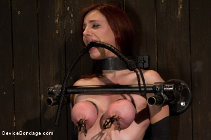 Photo number 14 from Bountiful Breasts with a Rose Red Complexion shot for Device Bondage on Kink.com. Featuring Iona Grace in hardcore BDSM & Fetish porn.
