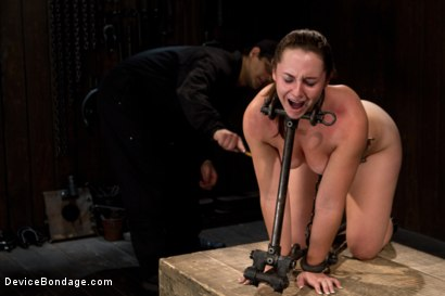 Photo number 3 from Made to suffer, made to cum - restrictive bondage equals squirting orgasm shot for Device Bondage on Kink.com. Featuring Sasha in hardcore BDSM & Fetish porn.