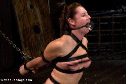 Photo number 5 from Made to suffer, made to cum - restrictive bondage equals squirting orgasm shot for Device Bondage on Kink.com. Featuring Sasha in hardcore BDSM & Fetish porn.