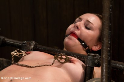 Photo number 6 from Made to suffer, made to cum - restrictive bondage equals squirting orgasm shot for Device Bondage on Kink.com. Featuring Sasha in hardcore BDSM & Fetish porn.
