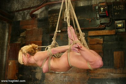 Photo number 9 from Jenni Lee and Lew Rubens shot for Hogtied on Kink.com. Featuring Lew Rubens and Jenni Lee in hardcore BDSM & Fetish porn.