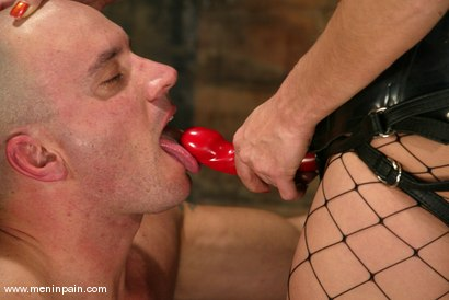 Photo number 10 from Nick Nite and Venus shot for Men In Pain on Kink.com. Featuring Nick Nite and Venus in hardcore BDSM & Fetish porn.
