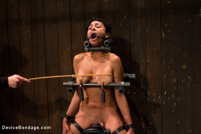 Photo number 3 from Tight bodied brunette rides the sybian shot for Device Bondage on Kink.com. Featuring Beretta James in hardcore BDSM & Fetish porn.