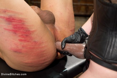 Photo number 4 from Mistress T Is What You Crave! shot for Divine Bitches on Kink.com. Featuring Mistress T and Dutch Bardoux in hardcore BDSM & Fetish porn.