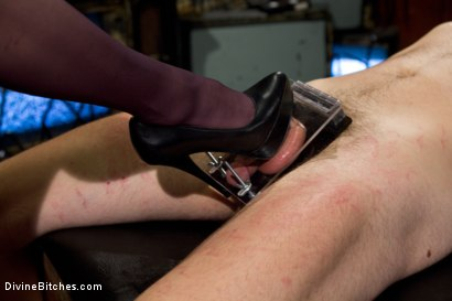 Photo number 11 from Your Cock Is Denied shot for Divine Bitches on Kink.com. Featuring Aiden Starr and Scratch in hardcore BDSM & Fetish porn.