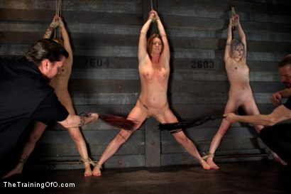 Photo number 5 from <b>Four Girl Intake<br>Sado-Masochists Slave Testing  shot for The Training Of O on Kink.com. Featuring Jessie Cox, Goddess Annika Amour, CiCi Rhodes, Alani Pi and Maestro Stefanos in hardcore BDSM & Fetish porn.