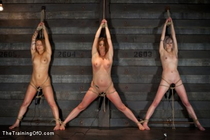 Photo number 4 from <b>Four Girl Intake<br>Sado-Masochists Slave Testing  shot for The Training Of O on Kink.com. Featuring Jessie Cox, Goddess Annika Amour, CiCi Rhodes, Alani Pi and Maestro Stefanos in hardcore BDSM & Fetish porn.