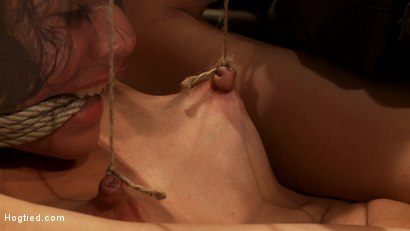 Photo number 12 from Beautiful Latina girl is orgasmed to sub space. Brutal nipple torture, clit torture & foot caning.  shot for Hogtied on Kink.com. Featuring Heather Vahn in hardcore BDSM & Fetish porn.