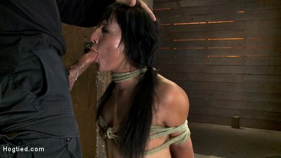 Photo number 5 from Cute girl next door with Daddy issues, get severely bound, brutally deep throated. Multiple orgasms! shot for Hogtied on Kink.com. Featuring Ashli  Orion in hardcore BDSM & Fetish porn.