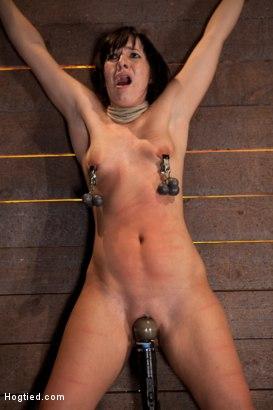 Photo number 13 from Wrist suspension while impaled on a cock & vibrator<br>Each brutal orgasm weakens & further impales. shot for Hogtied on Kink.com. Featuring Ashli  Orion in hardcore BDSM & Fetish porn.