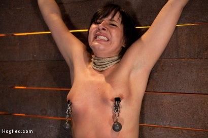 Photo number 14 from Wrist suspension while impaled on a cock & vibrator<br>Each brutal orgasm weakens & further impales. shot for Hogtied on Kink.com. Featuring Ashli  Orion in hardcore BDSM & Fetish porn.