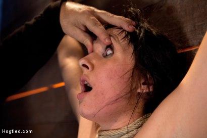 Photo number 8 from Wrist suspension while impaled on a cock & vibrator<br>Each brutal orgasm weakens & further impales. shot for Hogtied on Kink.com. Featuring Ashli  Orion in hardcore BDSM & Fetish porn.