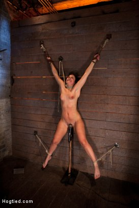Photo number 2 from Wrist suspension while impaled on a cock & vibrator<br>Each brutal orgasm weakens & further impales. shot for Hogtied on Kink.com. Featuring Ashli  Orion in hardcore BDSM & Fetish porn.