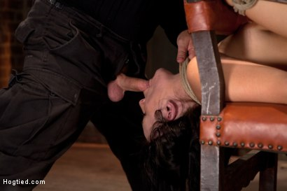 Photo number 8 from Girl next door takes brutal foot caning, devastating orgasms, a horrific throat fucking & anal abuse shot for Hogtied on Kink.com. Featuring Ashli  Orion in hardcore BDSM & Fetish porn.