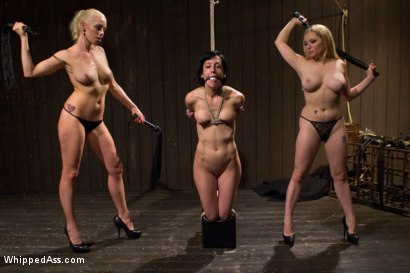 Photo number 4 from LezDom Take Down shot for Whipped Ass on Kink.com. Featuring Aiden Starr, Lorelei Lee and Elise Graves in hardcore BDSM & Fetish porn.