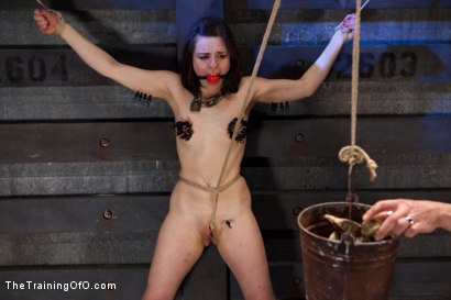 Photo number 13 from Final Training Day Juliette March<br>The Ultimate Test shot for The Training Of O on Kink.com. Featuring Juliette March in hardcore BDSM & Fetish porn.
