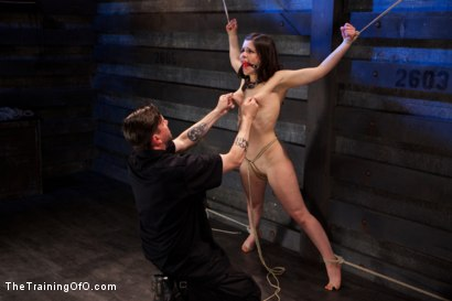 Photo number 6 from Final Training Day Juliette March<br>The Ultimate Test shot for The Training Of O on Kink.com. Featuring Juliette March in hardcore BDSM & Fetish porn.