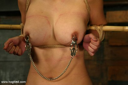 Photo number 5 from Lochai, Blaze and Mika Tan shot for Hogtied on Kink.com. Featuring Mika Tan, Lochai and Blaze in hardcore BDSM & Fetish porn.