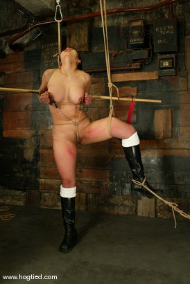 Photo number 7 from Lochai, Blaze and Mika Tan shot for Hogtied on Kink.com. Featuring Mika Tan, Lochai and Blaze in hardcore BDSM & Fetish porn.