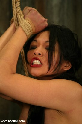 Photo number 9 from Lochai, Blaze and Mika Tan shot for Hogtied on Kink.com. Featuring Mika Tan, Lochai and Blaze in hardcore BDSM & Fetish porn.