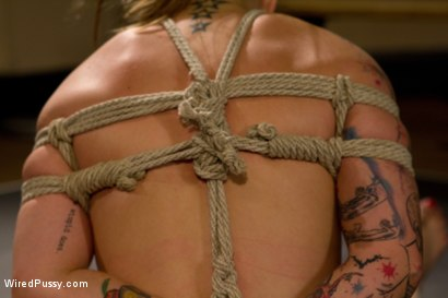 Photo number 12 from Spunky, Jessie Cox, bites off more that she can chew when hiring unorthodox trainer Lorelei Lee. shot for Wired Pussy on Kink.com. Featuring Lorelei Lee and Jessie Cox in hardcore BDSM & Fetish porn.