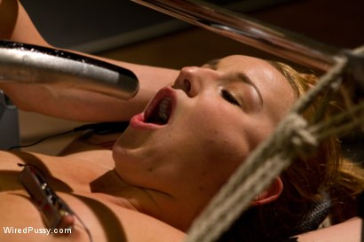 Photo number 6 from Spunky, Jessie Cox, bites off more that she can chew when hiring unorthodox trainer Lorelei Lee. shot for Wired Pussy on Kink.com. Featuring Lorelei Lee and Jessie Cox in hardcore BDSM & Fetish porn.
