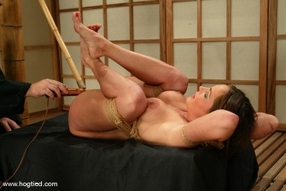 Photo number 12 from Venus shot for Hogtied on Kink.com. Featuring Venus in hardcore BDSM & Fetish porn.