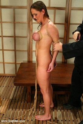 Photo number 5 from Venus shot for hogtied on Kink.com. Featuring Venus in hardcore BDSM & Fetish porn.