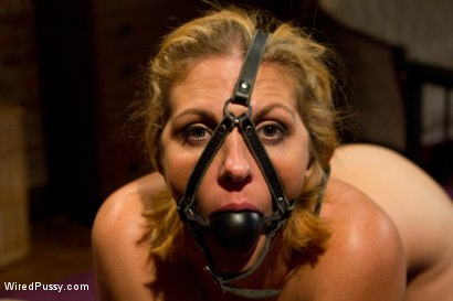 Photo number 11 from Intimate Dinner for Two Turns into a Stimulating Night of Revenge for Hot MILF Roxanne Hall! shot for Wired Pussy on Kink.com. Featuring Bobbi Starr and Roxanne Hall in hardcore BDSM & Fetish porn.