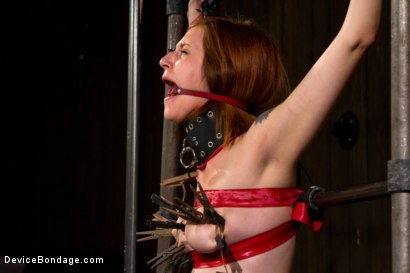 Photo number 11 from Redhead next door suffers for her orgasms shot for Device Bondage on Kink.com. Featuring Phoenix Askani in hardcore BDSM & Fetish porn.