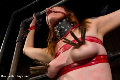 Photo number 9 from Redhead next door suffers for her orgasms shot for Device Bondage on Kink.com. Featuring Phoenix Askani in hardcore BDSM & Fetish porn.