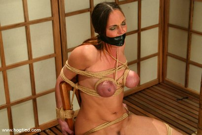 Photo number 15 from Venus shot for Hogtied on Kink.com. Featuring Venus in hardcore BDSM & Fetish porn.