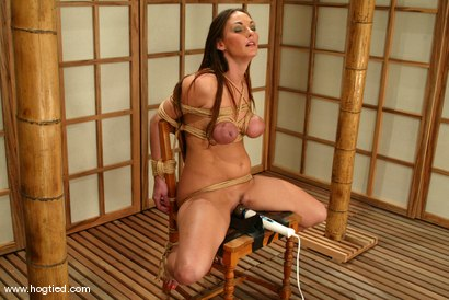 Photo number 10 from Venus shot for Hogtied on Kink.com. Featuring Venus in hardcore BDSM & Fetish porn.