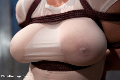 Photo number 2 from Water, Bondage, Screams, Orgasms and Big Wet Titties shot for Water Bondage on Kink.com. Featuring Dee Williams in hardcore BDSM & Fetish porn.