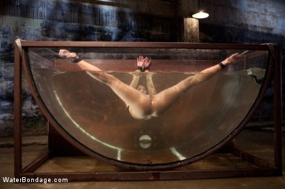 Photo number 15 from Bound, Soaked, Fucked and Dunked shot for Water Bondage on Kink.com. Featuring Ariel X in hardcore BDSM & Fetish porn.