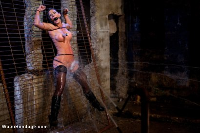 Photo number 4 from Bound, Soaked, Fucked and Dunked shot for Water Bondage on Kink.com. Featuring Ariel X in hardcore BDSM & Fetish porn.