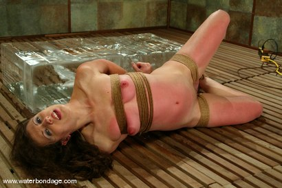Photo number 4 from Lena Ramon shot for Water Bondage on Kink.com. Featuring Lena Ramon in hardcore BDSM & Fetish porn.