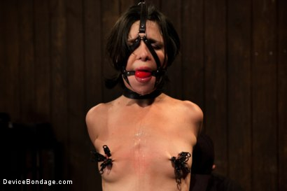 Photo number 4 from Pretty gets punished - double penetration and made to squirt into exhaustion shot for Device Bondage on Kink.com. Featuring Juliette March in hardcore BDSM & Fetish porn.