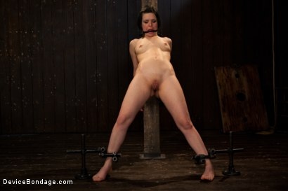 Photo number 5 from Pretty gets punished - double penetration and made to squirt into exhaustion shot for Device Bondage on Kink.com. Featuring Juliette March in hardcore BDSM & Fetish porn.