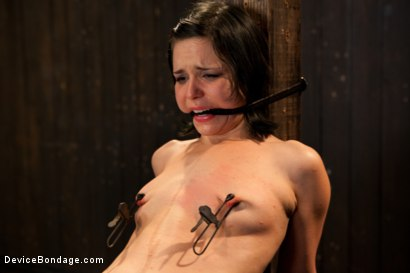 Photo number 6 from Pretty gets punished - double penetration and made to squirt into exhaustion shot for Device Bondage on Kink.com. Featuring Juliette March in hardcore BDSM & Fetish porn.