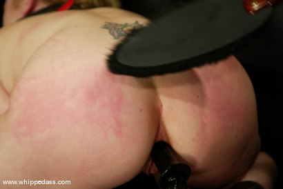 Photo number 14 from Kym Wilde and Erika Kole shot for Whipped Ass on Kink.com. Featuring Erika Kole and Kym Wilde in hardcore BDSM & Fetish porn.