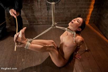 Photo number 8 from Sexy Amber has her elbows bound together, ankles to neck, and endures foot caning, brutal orgasms. shot for Hogtied on Kink.com. Featuring Isis Love and Amber Rayne in hardcore BDSM & Fetish porn.