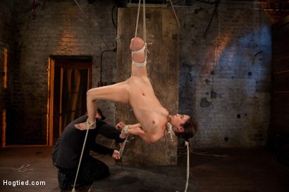 Photo number 4 from Tiny flexible brunette suffers a Category 5 suspension while being made to cum over and over! shot for Hogtied on Kink.com. Featuring Isis Love and Amber Rayne in hardcore BDSM & Fetish porn.
