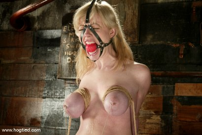 Photo number 7 from Adrianna Nicole shot for Hogtied on Kink.com. Featuring Adrianna Nicole in hardcore BDSM & Fetish porn.