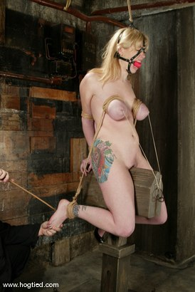 Photo number 8 from Adrianna Nicole shot for Hogtied on Kink.com. Featuring Adrianna Nicole in hardcore BDSM & Fetish porn.